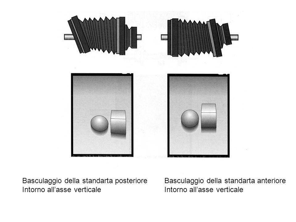 Basculaggio della standarta posteriore