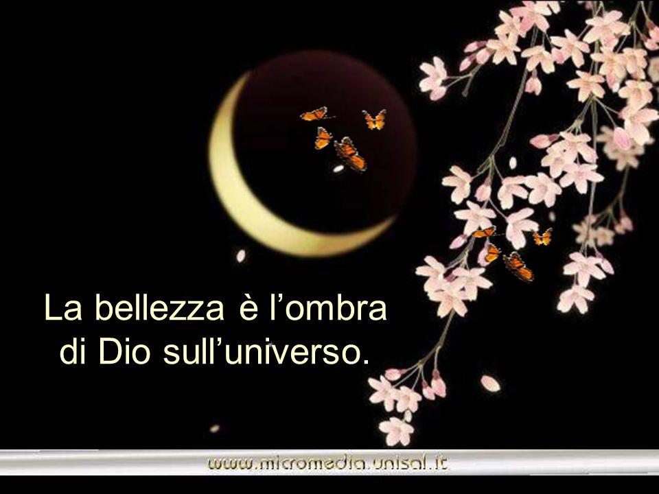 La bellezza è l'ombra di Dio sull'universo.