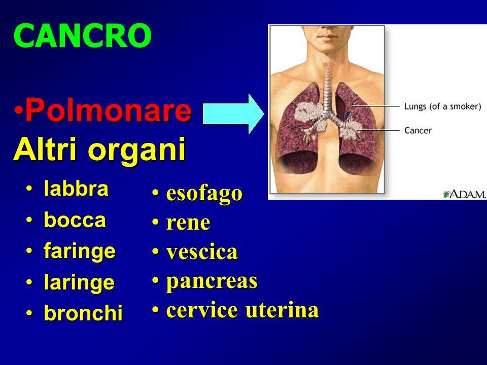 Polmonare Altri organi