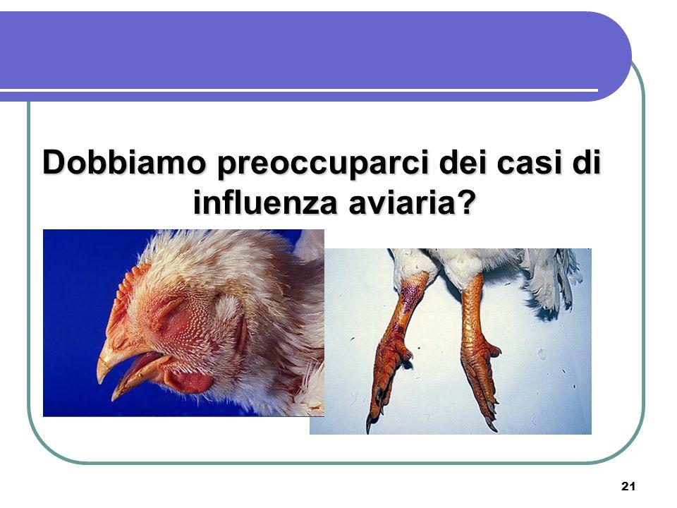 Dobbiamo preoccuparci dei casi di influenza aviaria