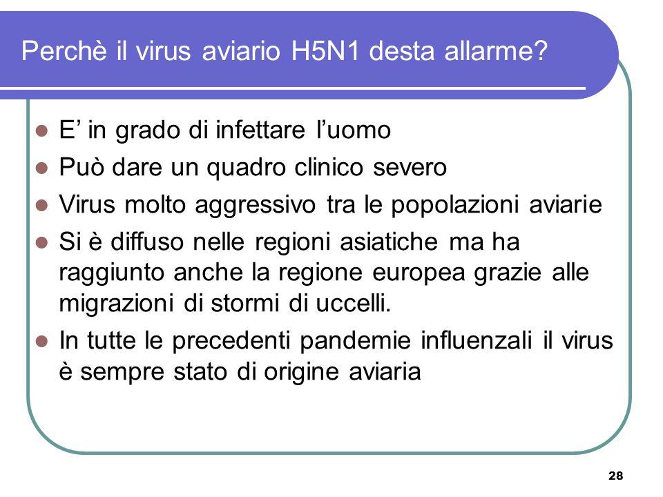 Perchè il virus aviario H5N1 desta allarme