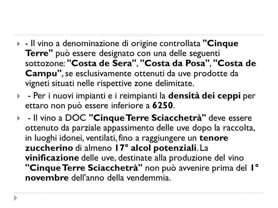 - Il vino a denominazione di origine controllata Cinque Terre può essere designato con una delle seguenti sottozone: Costa de Sera , Costa da Posa , Costa de Campu , se esclusivamente ottenuti da uve prodotte da vigneti situati nelle rispettive zone delimitate.