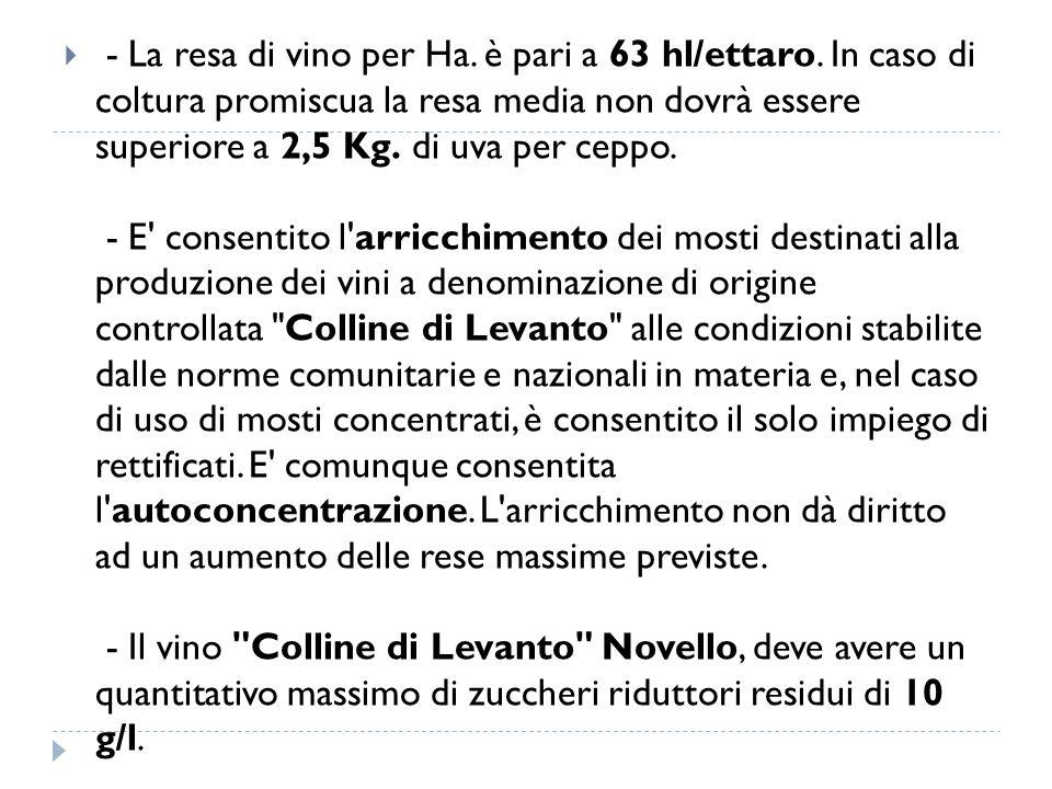 - La resa di vino per Ha. è pari a 63 hl/ettaro