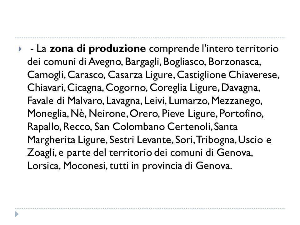- La zona di produzione comprende l intero territorio dei comuni di Avegno, Bargagli, Bogliasco, Borzonasca, Camogli, Carasco, Casarza Ligure, Castiglione Chiaverese, Chiavari, Cicagna, Cogorno, Coreglia Ligure, Davagna, Favale di Malvaro, Lavagna, Leivi, Lumarzo, Mezzanego, Moneglia, Nè, Neirone, Orero, Pieve Ligure, Portofino, Rapallo, Recco, San Colombano Certenoli, Santa Margherita Ligure, Sestri Levante, Sori, Tribogna, Uscio e Zoagli, e parte del territorio dei comuni di Genova, Lorsica, Moconesi, tutti in provincia di Genova.