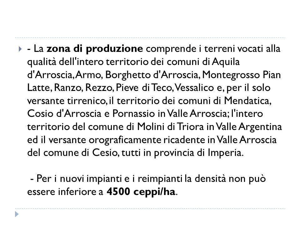 - La zona di produzione comprende i terreni vocati alla qualità dell intero territorio dei comuni di Aquila d Arroscia, Armo, Borghetto d Arroscia, Montegrosso Pian Latte, Ranzo, Rezzo, Pieve di Teco, Vessalico e, per il solo versante tirrenico, il territorio dei comuni di Mendatica, Cosio d Arroscia e Pornassio in Valle Arroscia; l intero territorio del comune di Molini di Triora in Valle Argentina ed il versante orograficamente ricadente in Valle Arroscia del comune di Cesio, tutti in provincia di Imperia.