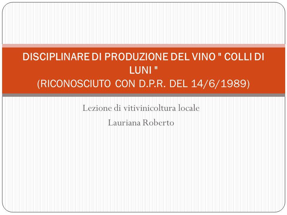 Lezione di vitivinicoltura locale Lauriana Roberto