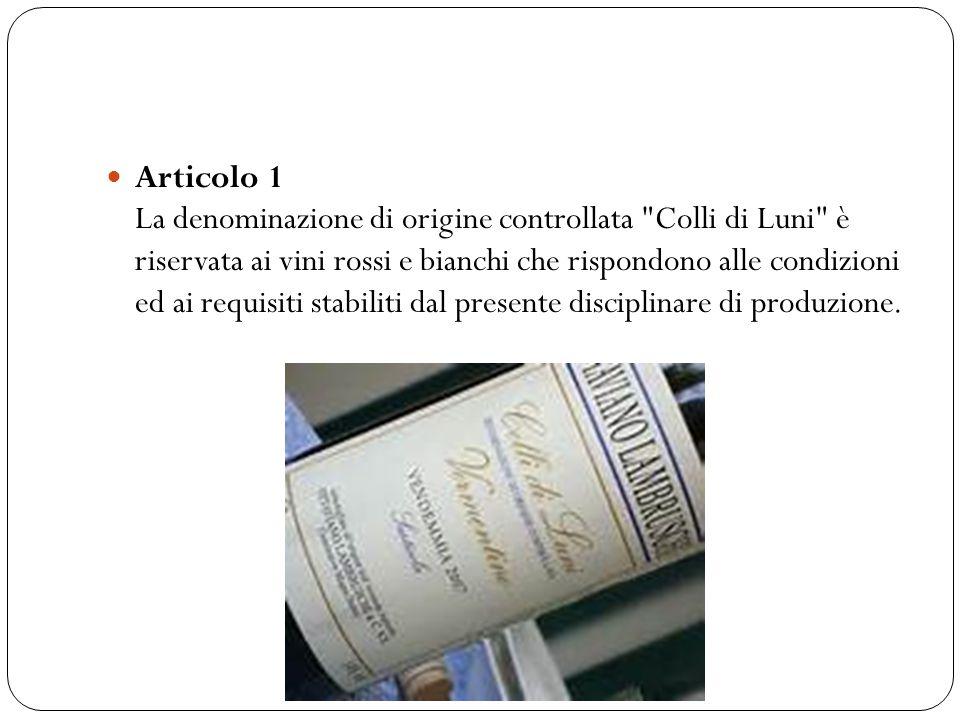 Articolo 1 La denominazione di origine controllata Colli di Luni è riservata ai vini rossi e bianchi che rispondono alle condizioni ed ai requisiti stabiliti dal presente disciplinare di produzione.