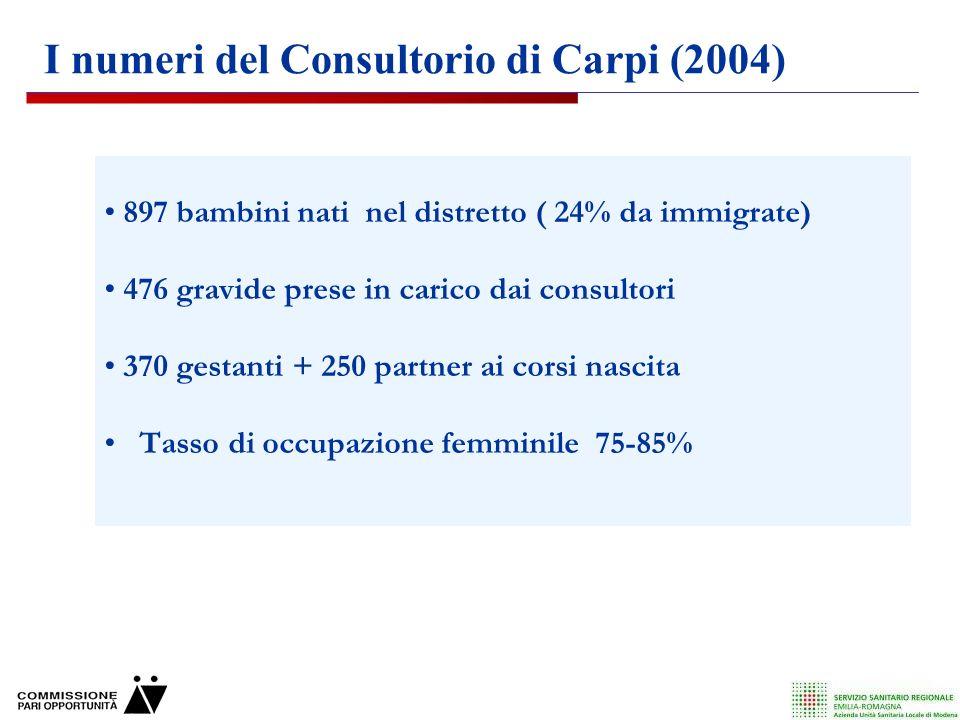 I numeri del Consultorio di Carpi (2004)