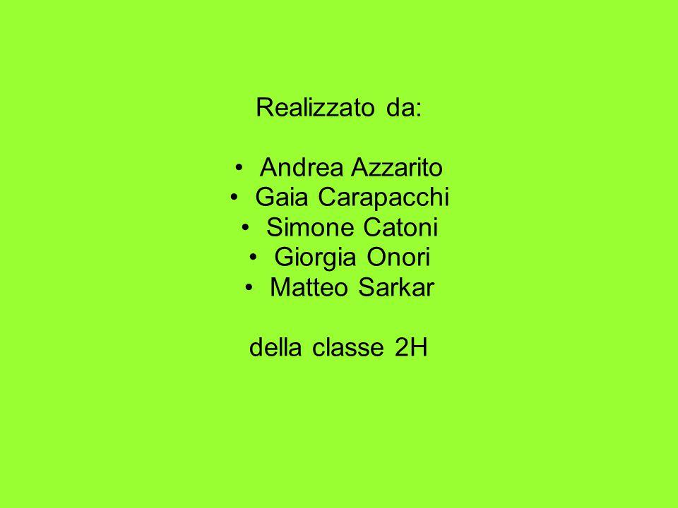 Realizzato da: Andrea Azzarito. Gaia Carapacchi.