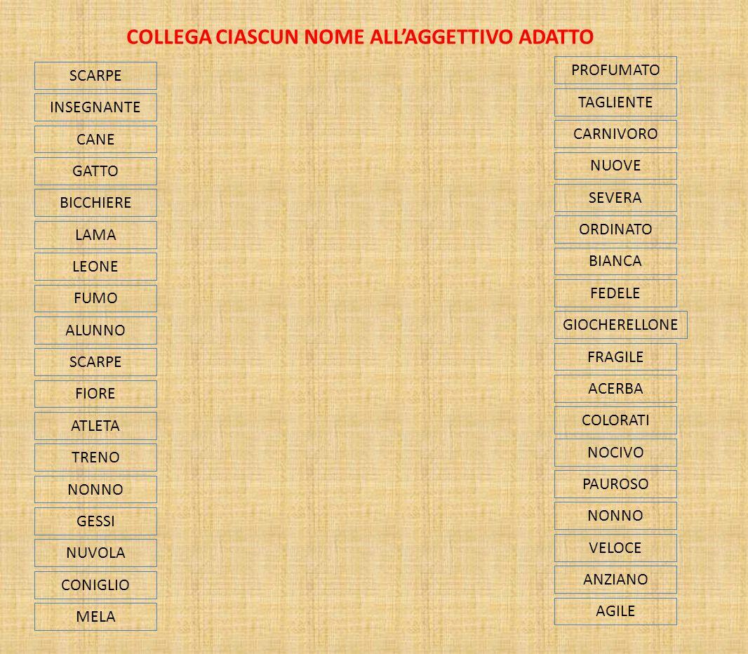 COLLEGA CIASCUN NOME ALL'AGGETTIVO ADATTO