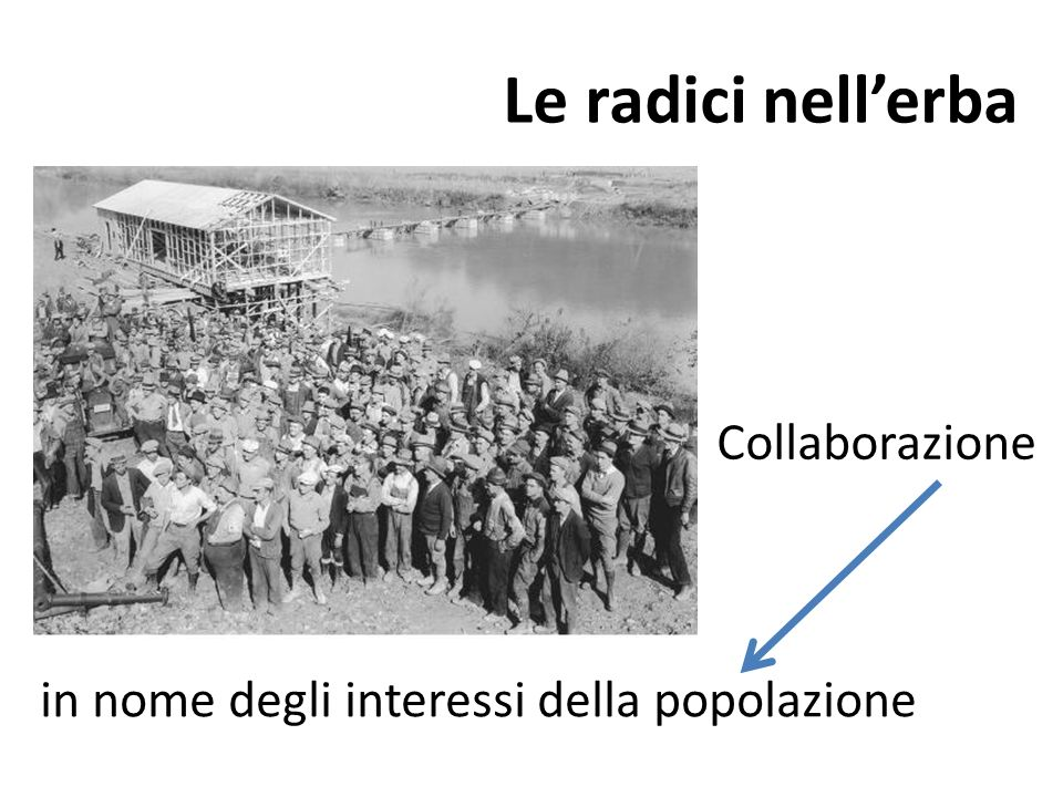 Le radici nell'erba Collaborazione