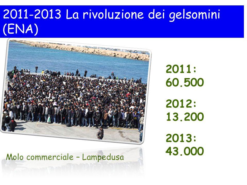 2011-2013 La rivoluzione dei gelsomini (ENA)