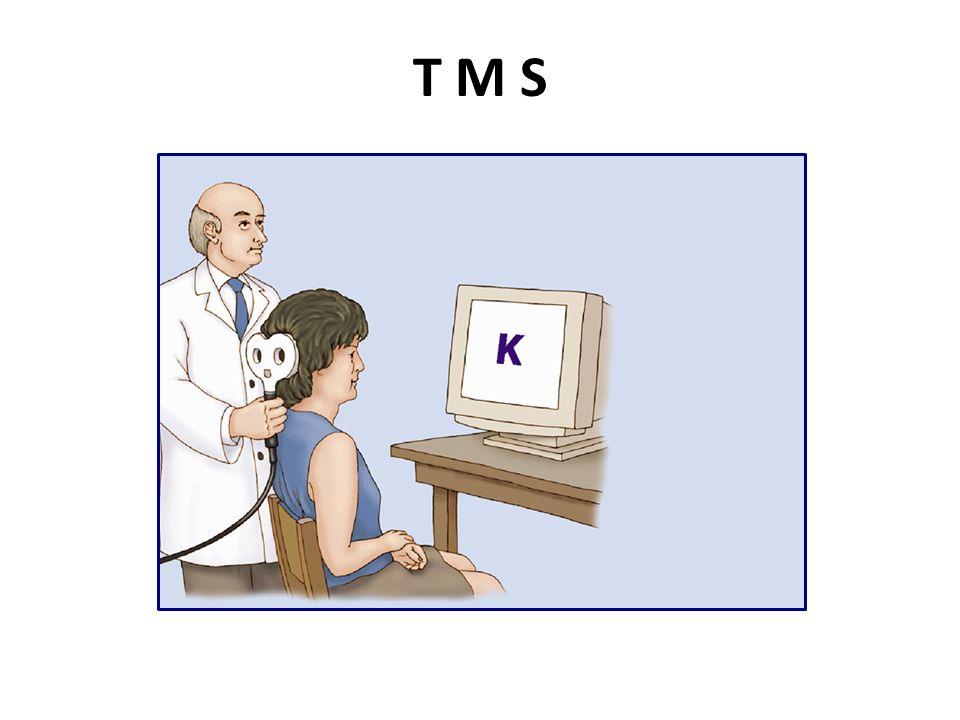 T M S