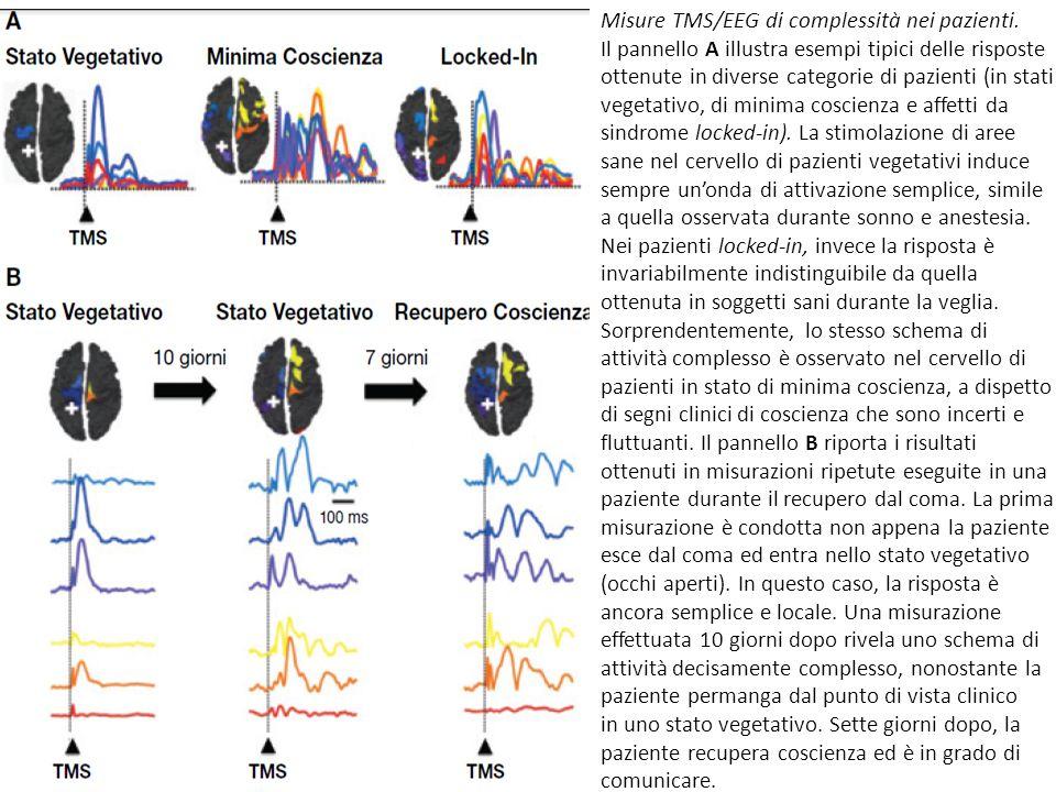 Misure TMS/EEG di complessità nei pazienti.