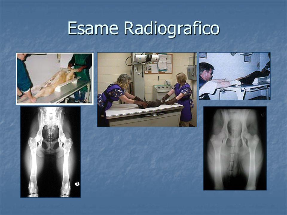 Esame Radiografico