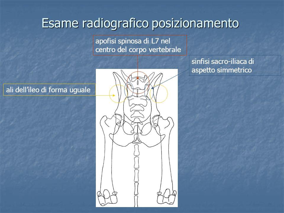 Esame radiografico posizionamento