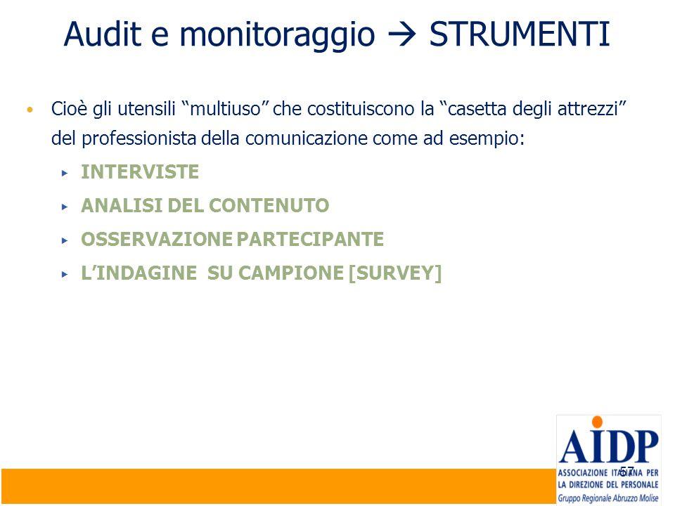 Audit e monitoraggio  STRUMENTI