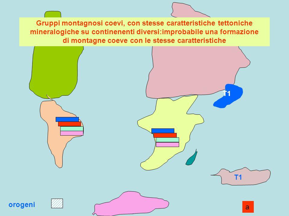 Gruppi montagnosi coevi, con stesse caratteristiche tettoniche mineralogiche su continenenti diversi:improbabile una formazione di montagne coeve con le stesse caratteristiche