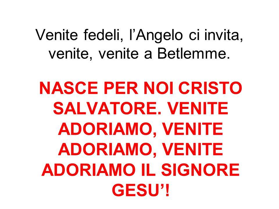 Venite fedeli, l'Angelo ci invita, venite, venite a Betlemme.