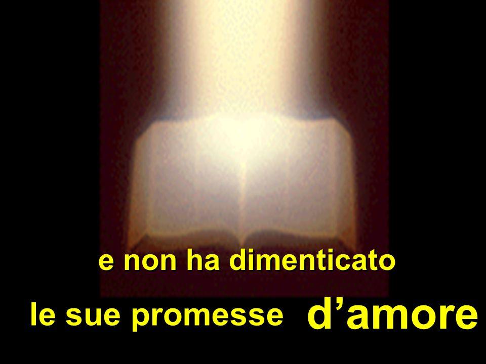 e non ha dimenticato d'amore le sue promesse