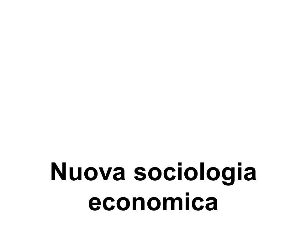 Nuova sociologia economica