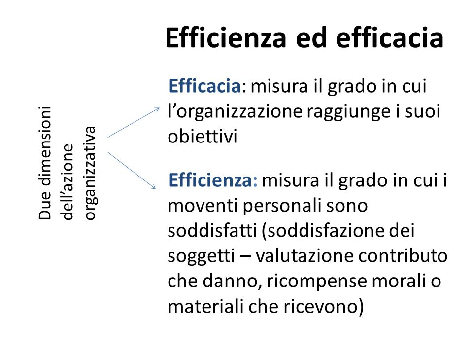 Efficienza ed efficacia