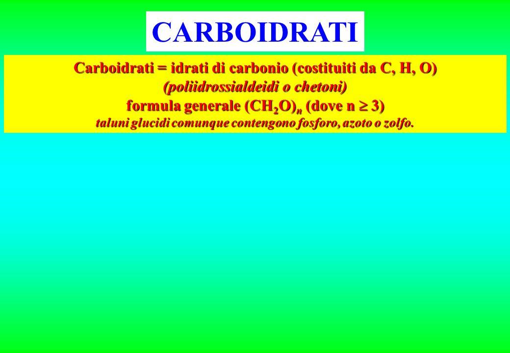 CARBOIDRATI Carboidrati = idrati di carbonio (costituiti da C, H, O)