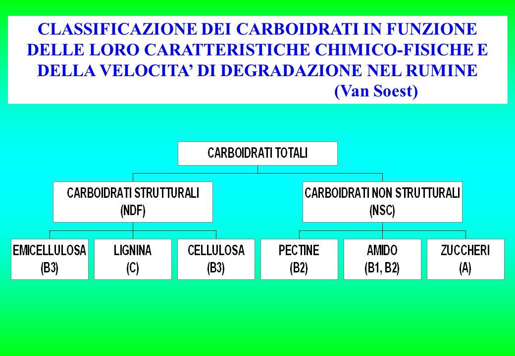 CLASSIFICAZIONE DEI CARBOIDRATI IN FUNZIONE DELLE LORO CARATTERISTICHE CHIMICO-FISICHE E DELLA VELOCITA' DI DEGRADAZIONE NEL RUMINE