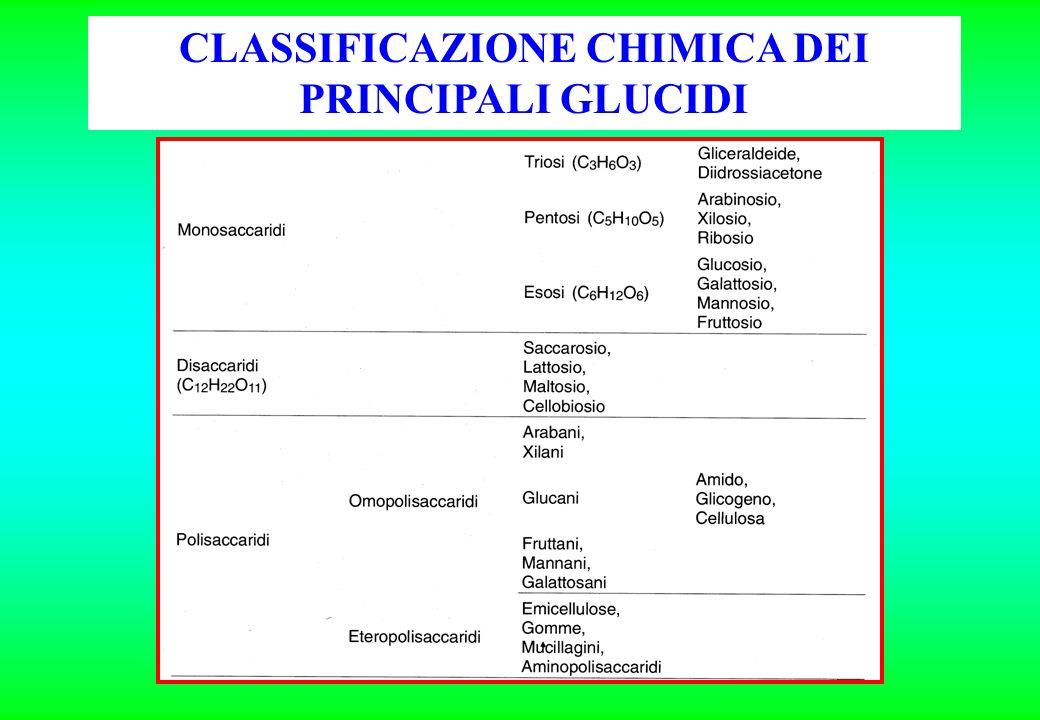 CLASSIFICAZIONE CHIMICA DEI PRINCIPALI GLUCIDI