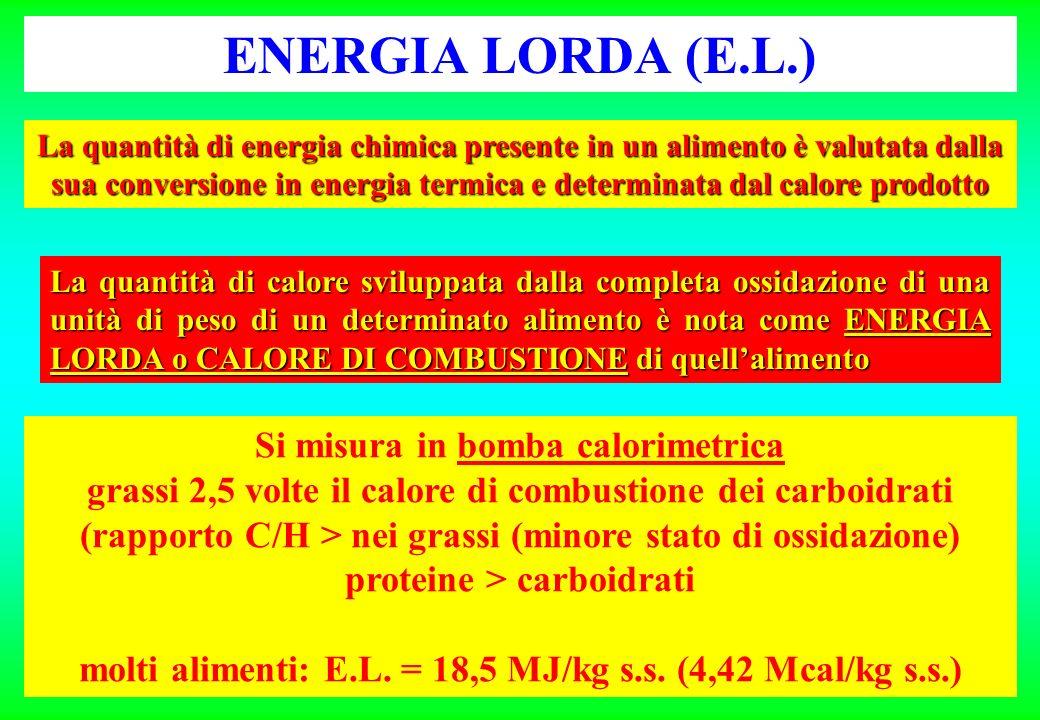 ENERGIA LORDA (E.L.) Si misura in bomba calorimetrica