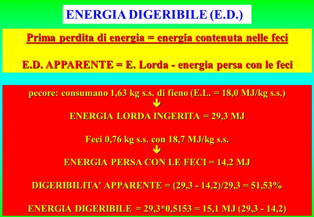 ENERGIA DIGERIBILE (E.D.)