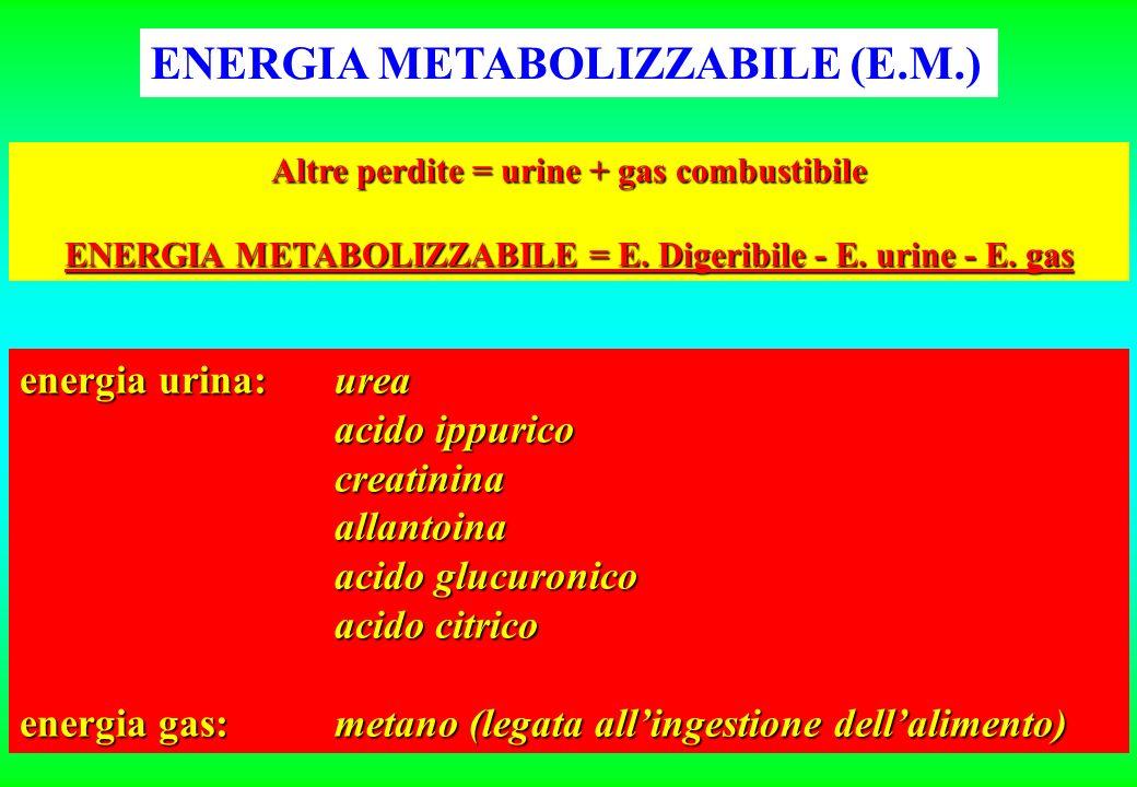 ENERGIA METABOLIZZABILE (E.M.)