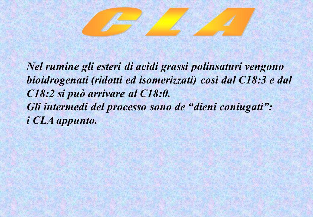 C L A