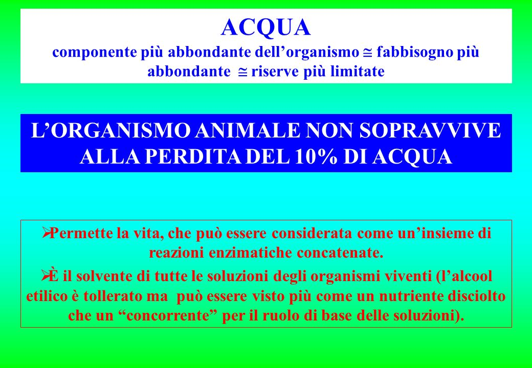 L'ORGANISMO ANIMALE NON SOPRAVVIVE ALLA PERDITA DEL 10% DI ACQUA