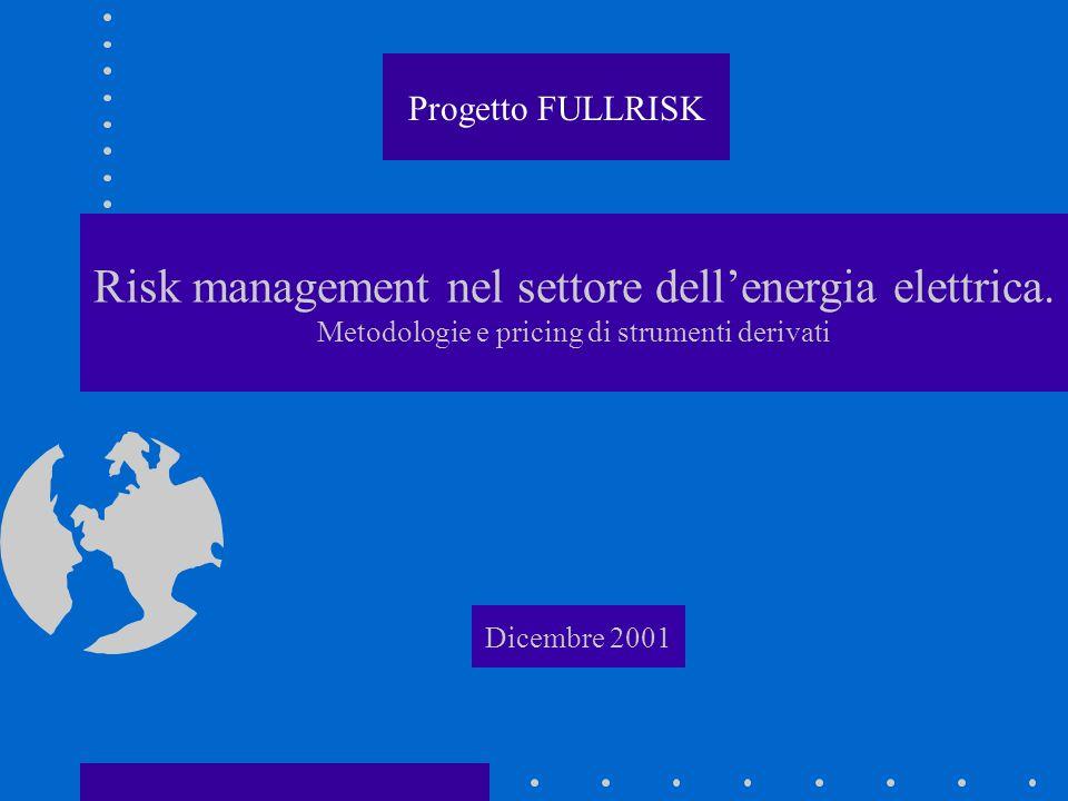 Risk management nel settore dell'energia elettrica.