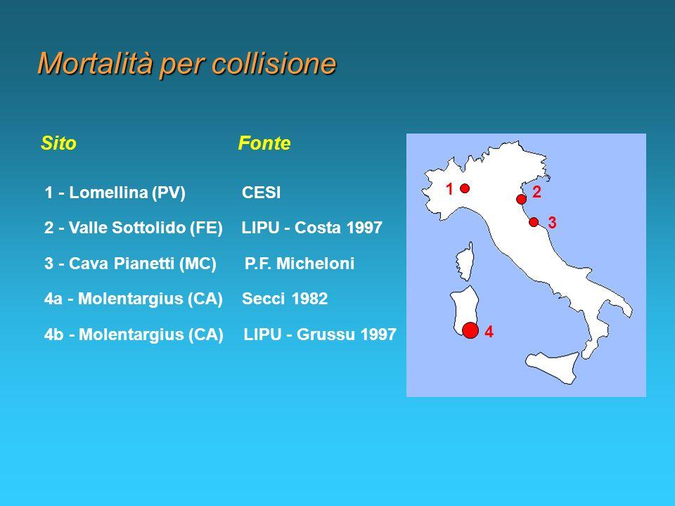 Mortalità per collisione