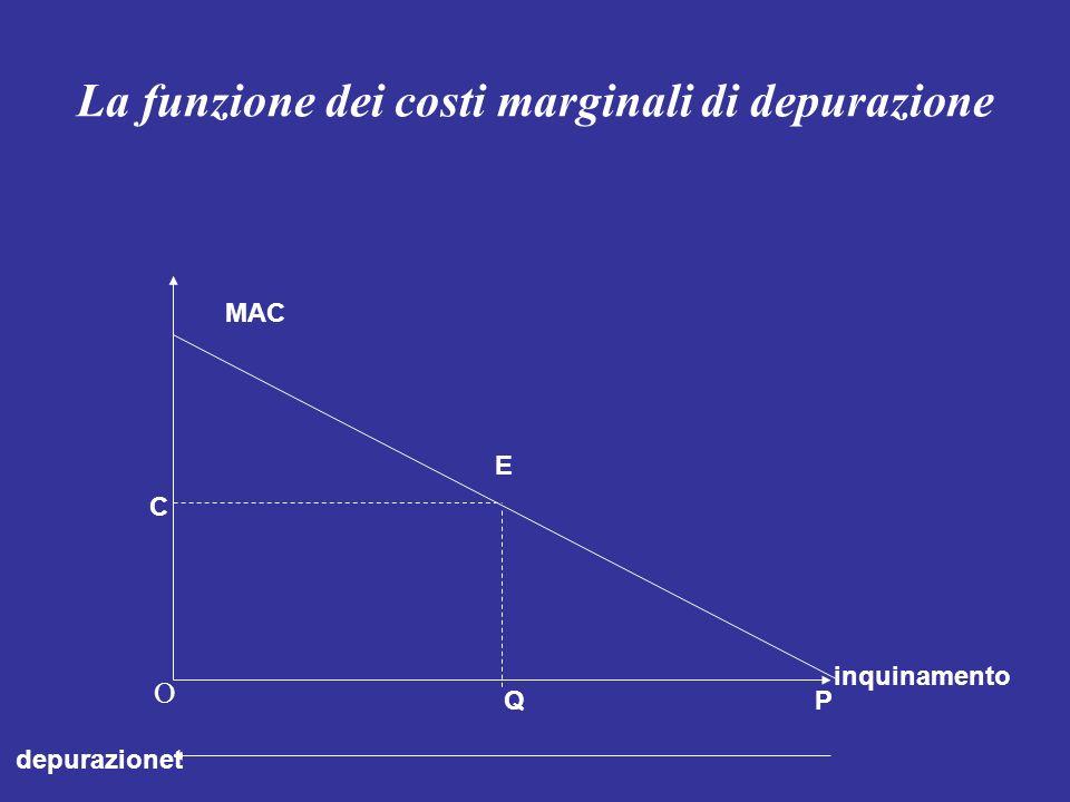 La funzione dei costi marginali di depurazione