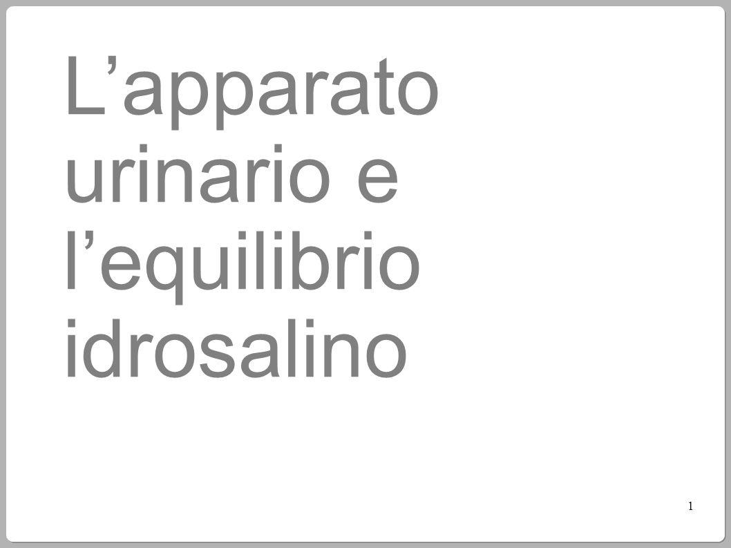 L'apparato urinario e l'equilibrio idrosalino