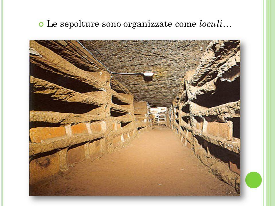 Le sepolture sono organizzate come loculi…