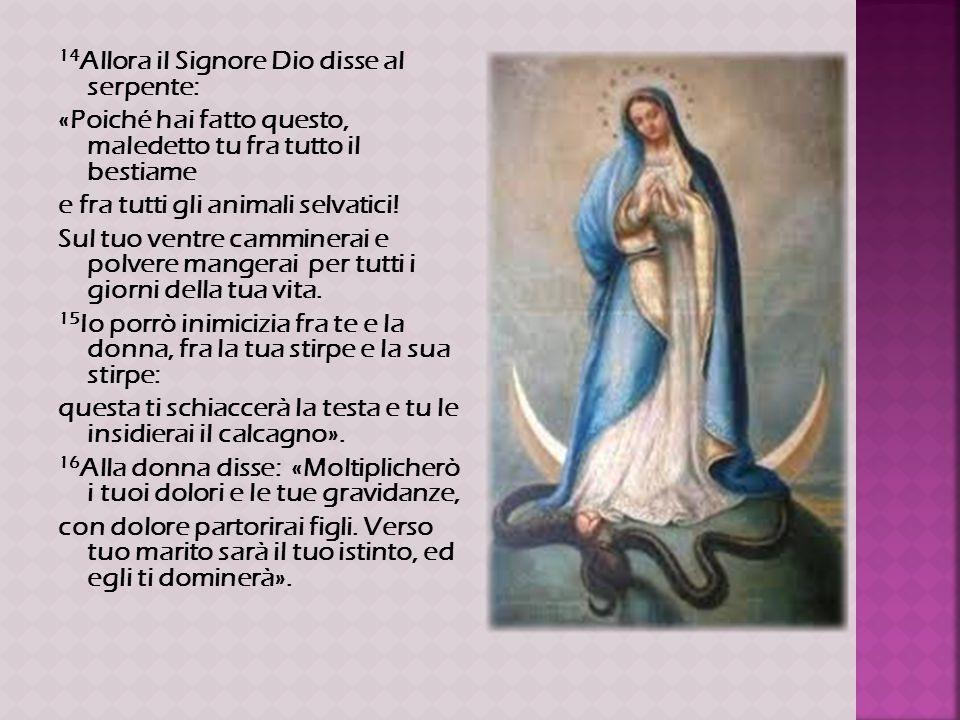 14Allora il Signore Dio disse al serpente: «Poiché hai fatto questo, maledetto tu fra tutto il bestiame e fra tutti gli animali selvatici.