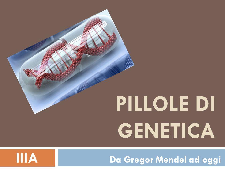 IIIA Da Gregor Mendel ad oggi