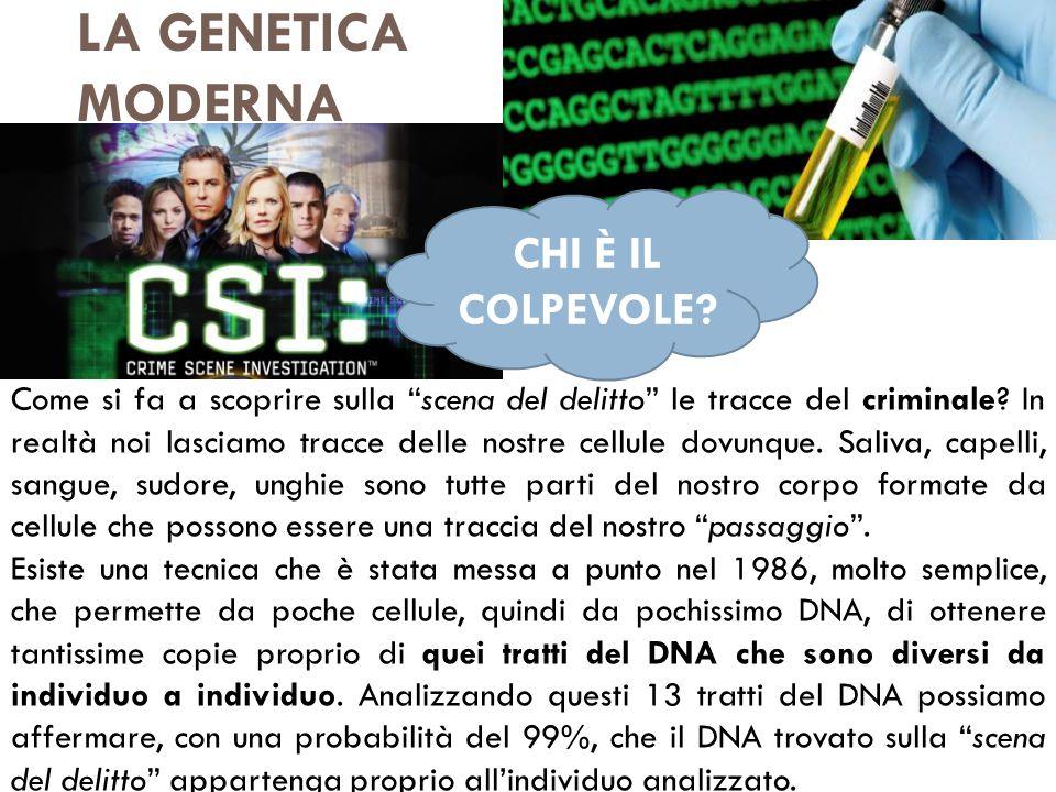 LA GENETICA MODERNA CHI È IL COLPEVOLE