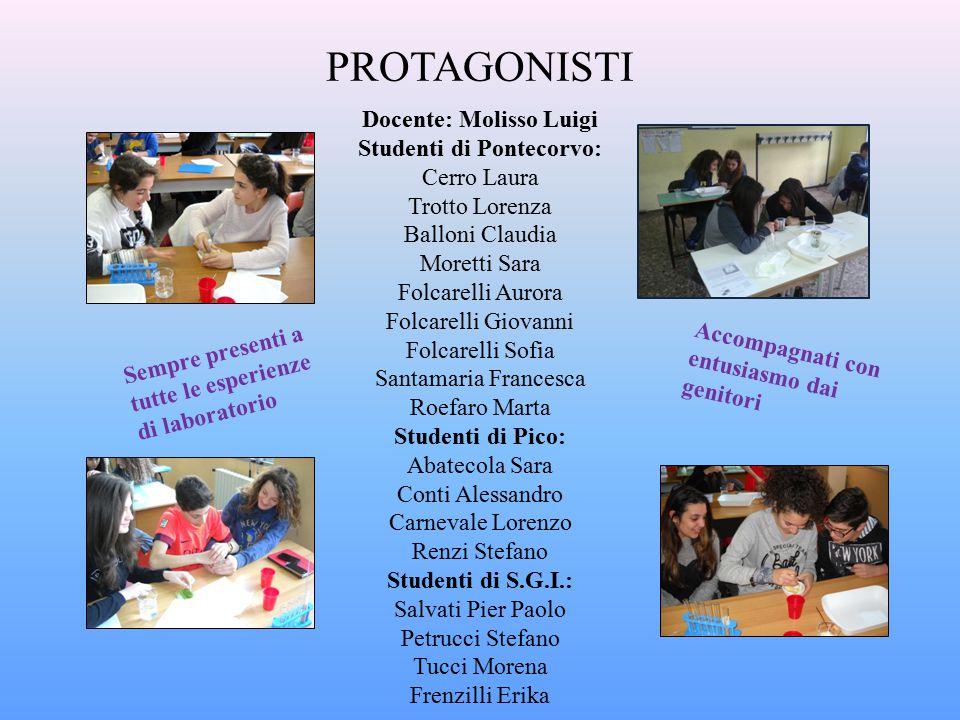 Docente: Molisso Luigi Studenti di Pontecorvo: