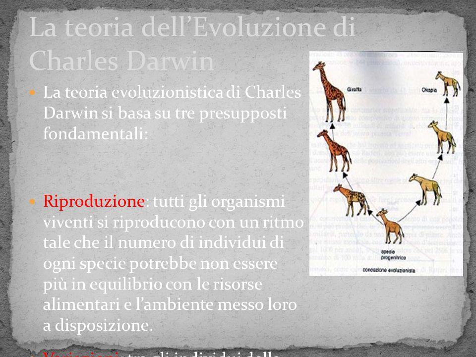 La teoria dell'Evoluzione di Charles Darwin