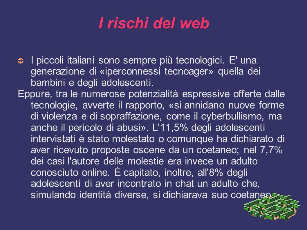 I rischi del web