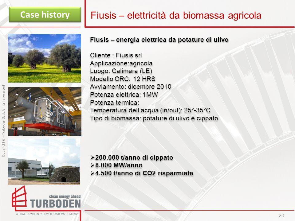 Fiusis – elettricità da biomassa agricola