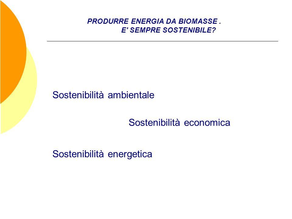 PRODURRE ENERGIA DA BIOMASSE . E SEMPRE SOSTENIBILE
