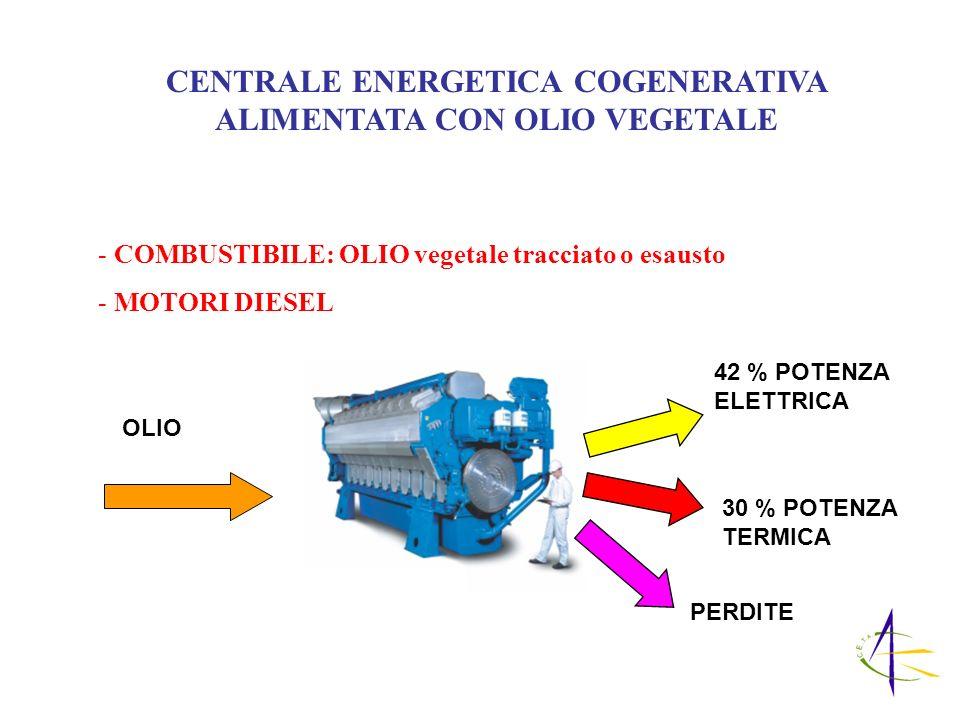 CENTRALE ENERGETICA COGENERATIVA ALIMENTATA CON OLIO VEGETALE