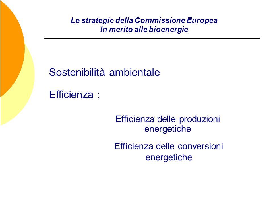 Le strategie della Commissione Europea In merito alle bioenergie