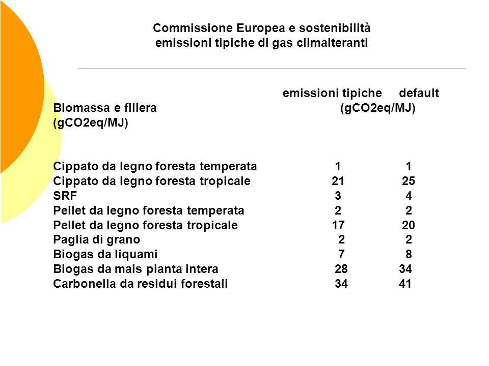 Commissione Europea e sostenibilità emissioni tipiche di gas climalteranti